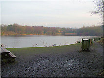 SD8632 : Lake next to Rowley Hall by Richard Spencer