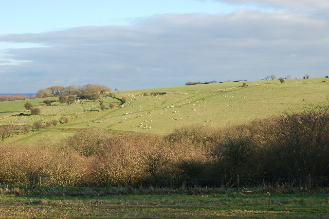 View of earthworks above Huish