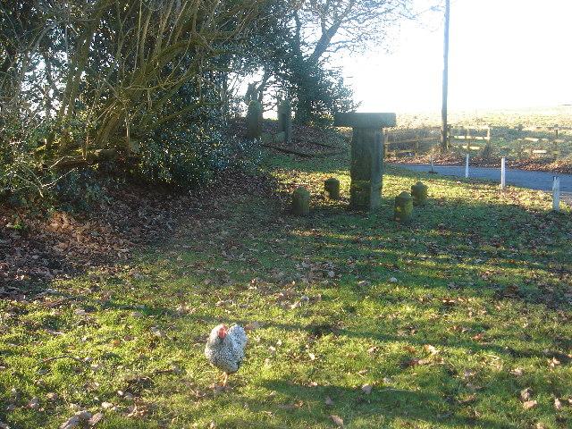 'Headless Cross' at Rivington