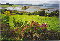 NM9247 : Castle Stalker and the Mouth of Loch Laich. by Colin Smith