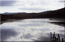 NR4268 : Loch Allan by Chris Heaton