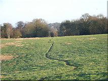 SU8369 : Farmland near Bracknell by Andrew Smith