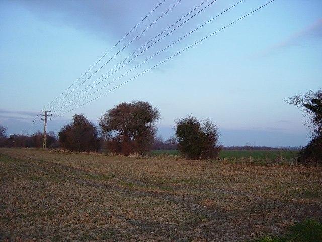Arable Field near Bilsham