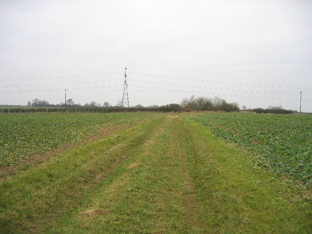 Field track looking north