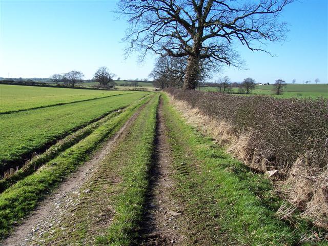 Footpath to Micklethwaite.