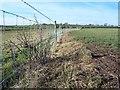 NY2653 : Fenced  Footpath by John Holmes
