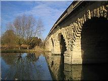 SP4408 : River Thames: Swinford Bridge by Nigel Cox