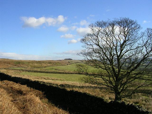 Below Embsay Crag looking east
