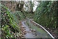 SX5058 : Steep Lane, Eggbuckland by Tony Atkin