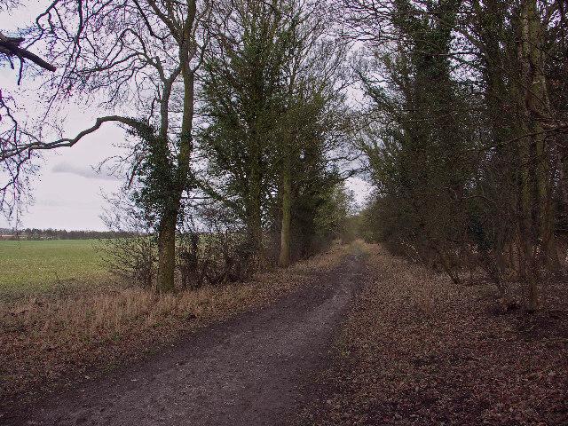 Ridgeway near Shirburn