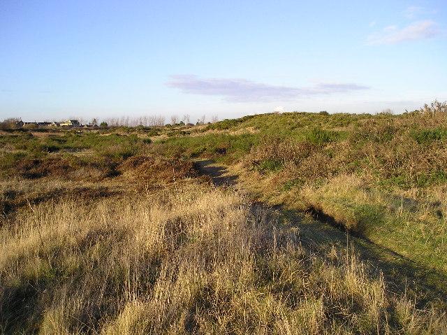 Towns Moor