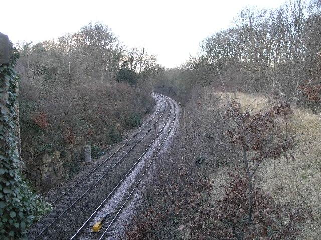 Railway Through Woodland