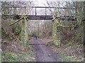NU0601 : Disused railway approaching Rothbury, Northumberland by Ralph Rawlinson