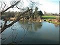 SP3065 : Weir on River Leam by Dennis Turner