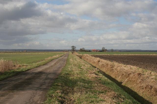 Bottom Farm, Morton Fen
