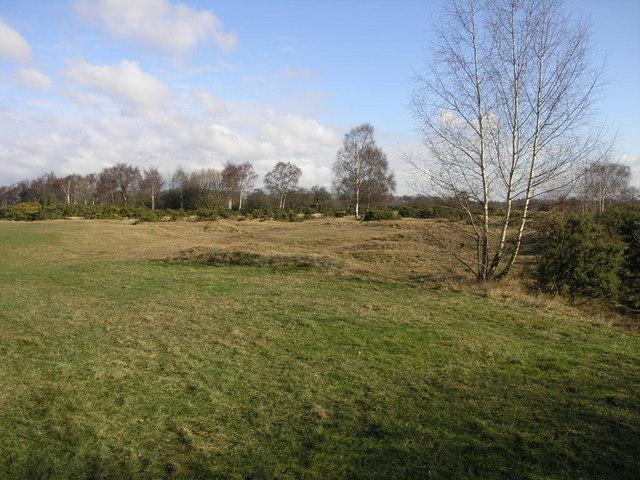 Lindrick Common