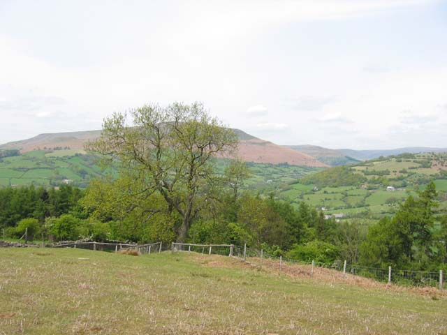 Descending the Sugar Loaf towards Llangenny