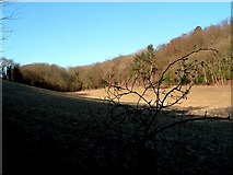SP9409 : Sweeping fields near Wigginton by Rob Farrow