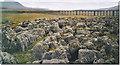 SD7679 : Limestone Pavement at Runscar Scar, Ribblehead. by Colin Smith