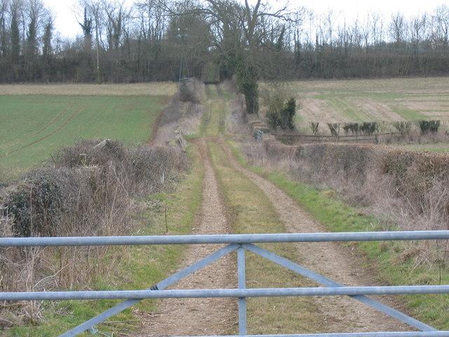 Farm access track near Kemble