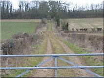 ST9898 : Farm access track near Kemble by Peter Watkins