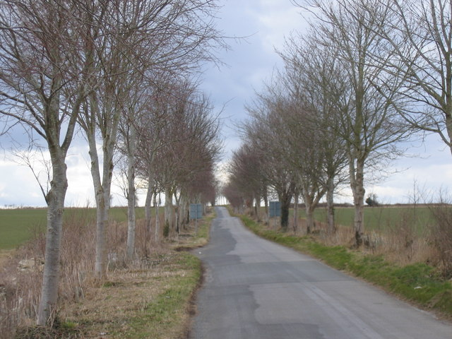 The road from the Fosse Way to Tarlton