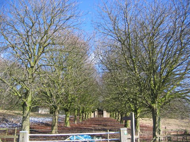 Londesborough - Gate Entrance