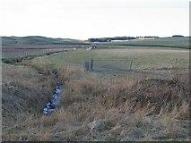 NT0803 : Annandale farmland. by Richard Webb