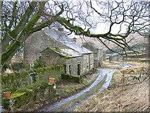 NY8048 : Whiteley Shield Farm by Andrew Smith