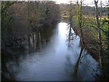SX8578 : River Teign at Chudleigh Bridge by Derek Harper