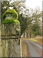 NU1704 : Old Gatepost to Newton Hall by Christine Westerback