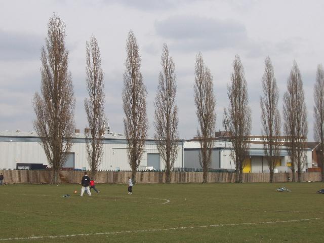 King George's Playing Field, Borehamwood