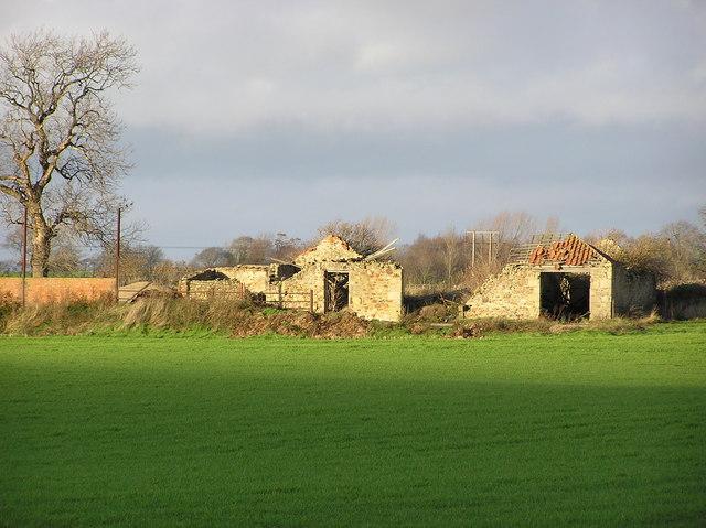 Wild Duck Farm : Cleasby Lane