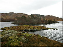 NM6995 : Island in Loch an Nostarie by Lisa Jarvis