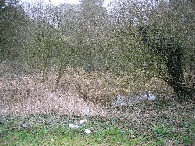 Mediaeval Fish Pond, Rothwell