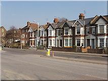 TQ2081 : Horn Lane, North Acton by David Hawgood