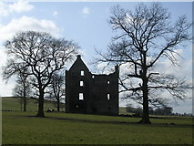 NS6558 : Gilbertfield Castle by Chris Upson