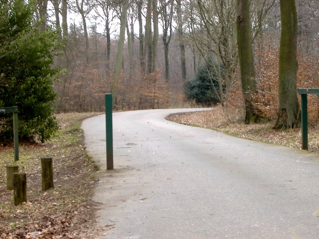 Hengrove Wood : Entrance to Wendover Woods