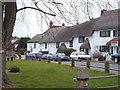 SX9896 : Dog Village by Derek Harper