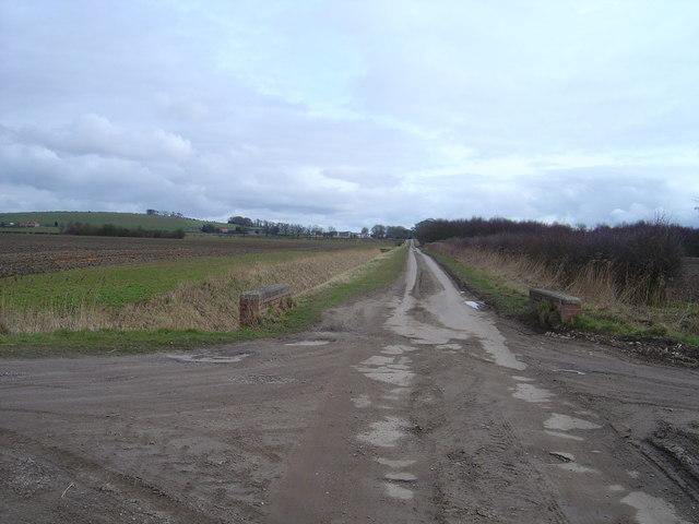 Single track road near Houghton Moor
