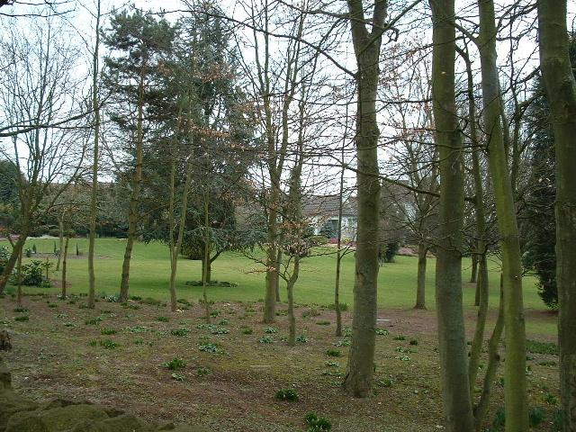 Gardens of Serridge House