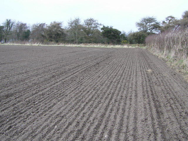 Ploughed field at Cloughboy