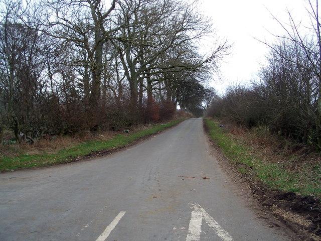 The Skirwith road looking towards Ellercow