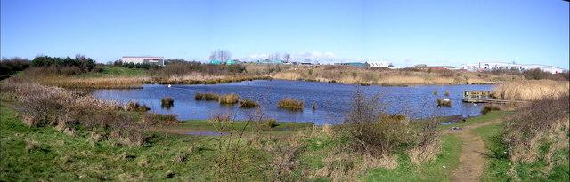 Drinkfield Marsh Nature  Reserve