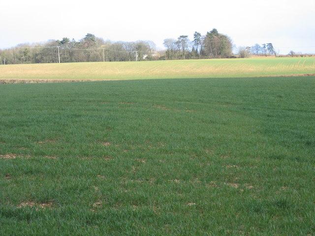 Fields near Preston