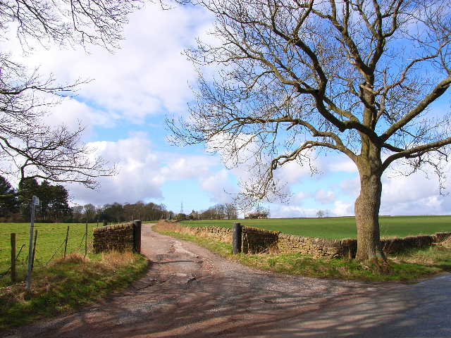 The driveway to Biggin Farm, New Brancepeth