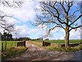 NZ2141 : The driveway to Biggin Farm, New Brancepeth by Oliver Dixon
