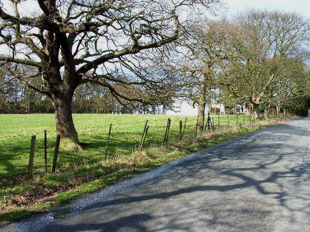 Back road from New Brancepeth to Esh Winning