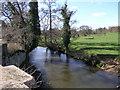 SJ5405 : Brook from Bridge by Michael Patterson