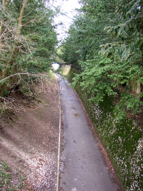 The sunken driveway, Polesden Lacey, Great Bookham